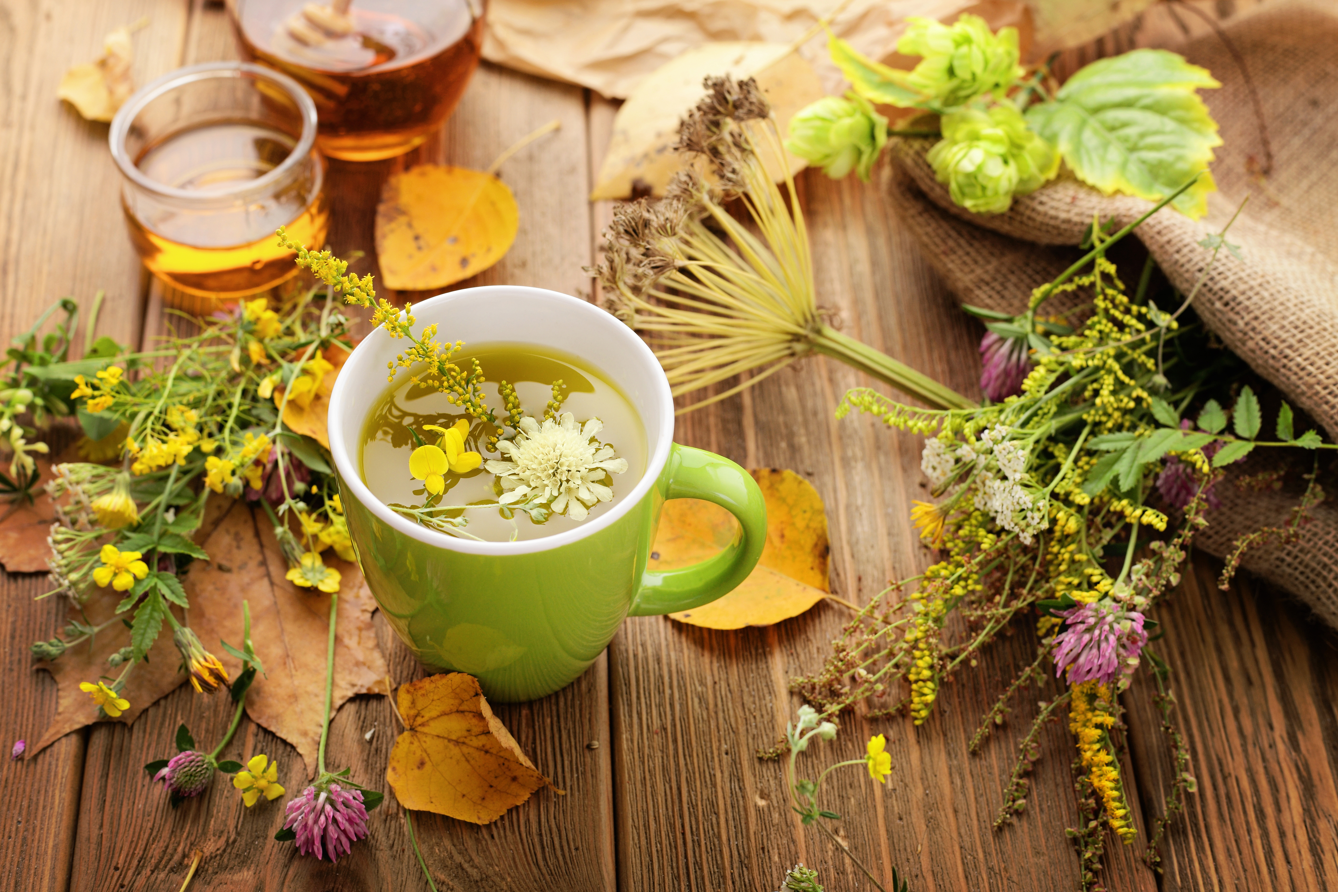 A guide to using herbal remedies for Bladder Control